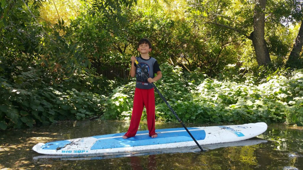 Image shows a young boy on a paddleboard surrounded by shallow irrigation water.