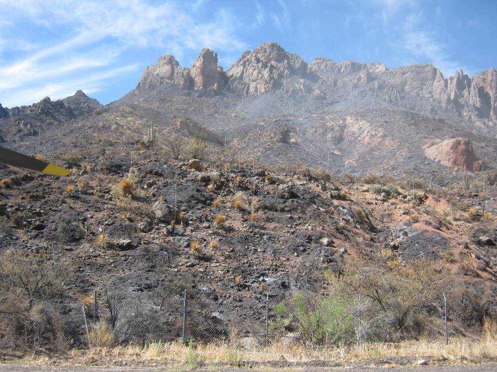 Photo showing damage from the Woodbury Fire